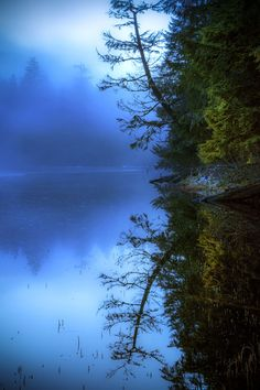 Photograph The blue hour by Carlos Rojas on 500px