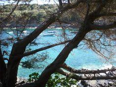 Giglio-Insel, Maremma, Toskana
