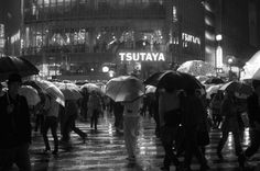 Daily Life in Tokyo by Davide Filippini