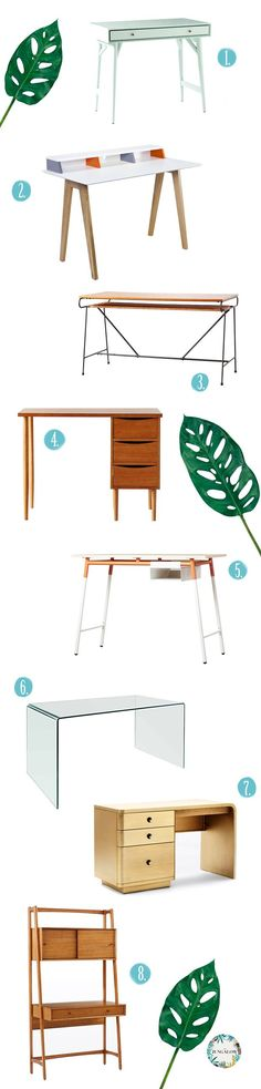 A Very Jungalicious Desk Roundup