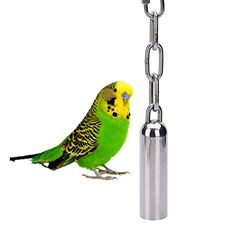 Stainless Steel Bells Toy with Sweet Sound for Bird Parrot Macaw African Greys Cockatoo Parakeet Cockatiels Conure Budgies Cage S 76 * To view further for this item, visit the image link.Note:It is affiliate link to Amazon.
