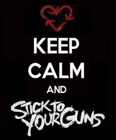 38 Best Stick To Your Guns Images Music Bands Lyrics