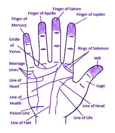 a palm reading chart you ll want to refer to over and over again rh pinterest com