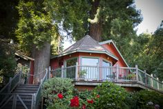 The house viewed fron the river ; nestled in a grove of Redwoods. Cool but maybe not enough room for us.