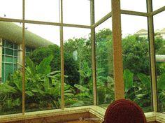 Bandar Seri Begawan, Room, Furniture, Home Decor, Bedroom, Decoration Home, Room Decor, Rooms, Home Furnishings