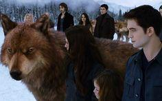 Amanhecer - Parte 2 Depois de quase morrer durante o parto de sua filha, Bella acorda como vampira e passa a viver sua nova vida ao lado de Edward. O problema que o casal precisa enfrentar no final da saga é o clã dos Volturi, que descobriu que eles tiveram um bebê metade vampiro e metade humano. No fim, a família de vampiros descobre que a criança é inocente e Bella e Edward finalmente ficam em paz.