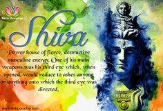 Shiv power