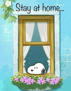 Stay at Home Snoopy Love, Charlie Brown And Snoopy, Snoopy And Woodstock, Snoopy Images, Snoopy Pictures, Peanuts Cartoon, Peanuts Snoopy, Peanuts Comics, Tierischer Humor