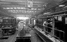 uzinele Locomotive, Train, Vehicles, Automobile, Locs, Strollers, Trains, Vehicle, Tools