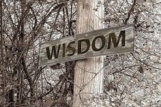 What is Wisdom? Philosophy and Psychology of Wisdom - Part 1 Angel Number 13, What Is Wisdom, My Prayer For You, Wise People, Daily Inspiration, Inspiration Quotes, Motivation Inspiration, Wisdom Quotes, Psalms