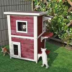 Outdoor Cat Shelter Safe Space Weatherproof Two Story House Condo Small Pets Red #OutdoorCatShelter Outside Cat Shelter, Outside Cat House, Feral Cat Shelter, Feral Cat House, Outdoor Cat Shelter, Outdoor Shelters, Outdoor Cats, Feral Cats, Cat Shelters