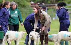 Catherine, Duchess of Cambridge visits Author Michael Morpurgo's Farms for City Children on May 2017 in Arlingham, Gloucestershire. Duchess Of York, Duchess Kate, Duke And Duchess, Duchess Of Cambridge, Kate Middleton Photos, Kate Middleton Style, Lamb Pictures, Michael Morpurgo, Royal Uk