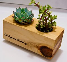 Cedar Wood Succulent Plant Holder by LilCypressWorkshop on Etsy, $15.00