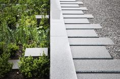 Gallery of Novartis Physic Garden / Thorbjörn Andersson + Sweco architects - 4