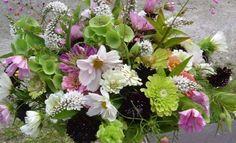 Anna's Annuals: Starting Cut Flowers from Seed - Julie Moir Messervy Design Studio