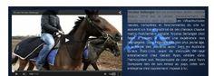 Horses, Animals, Design, Web Design, Animales, Animaux, Animal, Animais