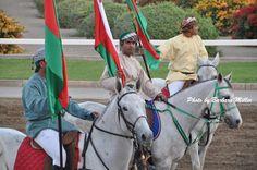 Horse Race Festival