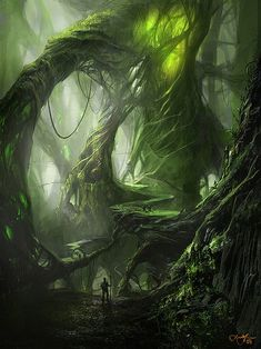 The scarce green light that has the courage to seep through the thick strangely shaped trees of this forest is only one of the effects that make this place look so much like a dream and yet so much like a nightmare -Zwaluws-: