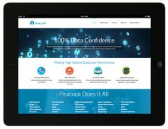 Homepage design by Raison—Peacock is a groundbreaking high-volume data validation, inventory , and control software.