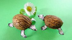 Image result for the sapling fifi crafts