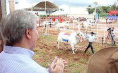 Expo Canindeyú