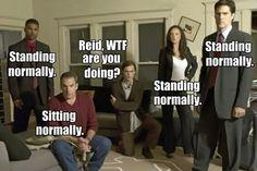 It's a mix of Reid and Matthew Gray Gubler haha Criminal Minds Memes, Spencer Reid Criminal Minds, Dr Reid, Dr Spencer Reid, Matthew Gray Gubler, Face Threading, Behavioral Analysis Unit, Crimal Minds, The Lone Ranger