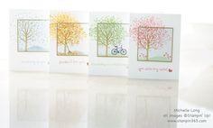 Sheltering Tree - four seasons