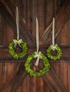 Preserved Boxwood Wreaths
