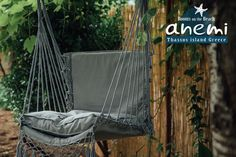 The swing in our green backyard, Anemi Rooms to Let on the Beach of Skala Potamias, Thasos island Greece. Tel.: +30 25930 61 480, +30 6947 589 555, E-Mail: anemithassos@gmail.com Ενοικιαζόμενα δωμάτια στην Παραλία Χρυσή Ακτή της Σκάλας Ποταμιάς, Θάσος.