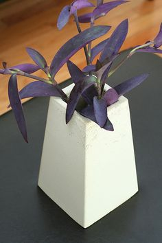 white, modern concrete planter $54 Concrete Art, Concrete Design, Concrete Planter Boxes, Ikebana, Projects To Try, Gift Wrapping, Gardening, Indoor, Crafty