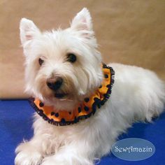 Orange with Black Dots Halloween Dog Scrunchie Neck Ruffle, $6.50 | SewAmazin's Studio @sewamazin #handmade #cpromo