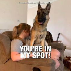 The struggle is real! 🤭 Kid loved by Michele Eversole 🐾 #germanshepherd #germanshepherddogs #germanshepherdmemes #agermanshepherd #quotesaboutgermanshepherds  #germanshepherdquotesfunny #gsddog #gsdmemes #gsdquotes #gsdfunny German Shepherd Memes, R Man, Gsd Dog, Struggle Is Real, Funny Dogs, Country, Kids, Funny German Shepherds, Young Children