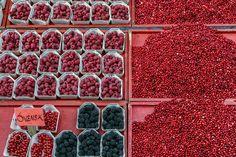Svensk - banking berries, Stockholm