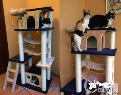 ¿hay forma de engreirlos más? Rascador para gatos cat-oh modelo Don Gato