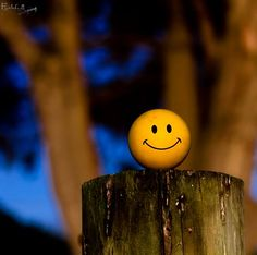 Smilely Ball in St Leonards- Emoji Wallpaper Iphone, Smile Wallpaper, Cute Wallpaper Backgrounds, Pretty Wallpapers, Colorful Wallpaper, Cute Emoji Wallpaper, Music Wallpaper, Black Wallpaper, Cute Cartoon Pictures