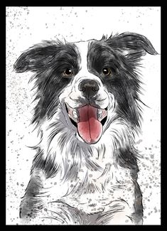 Border Collie - Dog in Art Watercolor Paintings Of Animals, Happy Paintings, Dog Paintings, Border Collie Art, Yorkshire Terrier Puppies, Collie Dog, Dog Portraits, Dog Art, Animal Drawings