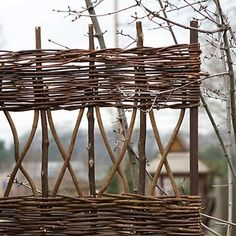 : A Tri-Fold Screen made of woven vines can stand on its own or lean against a wall; it's from Terrain.