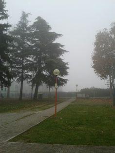 Nebbia...