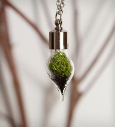 Teeny Tiny Terrarium Teardrop Necklace! Self-sustaining and so adorable!