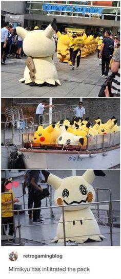 What are you talking about that's a Pikachu - Pokemon Ideen Memes Do Pokemon, Pokemon Comics, Pokemon Funny, Pokemon Stuff, Pikachu, Pokemon Pictures, Funny Pictures, Catch Em All, Stupid Funny Memes