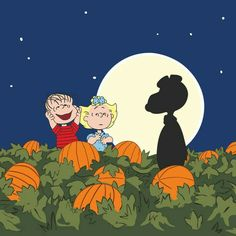 Description: Snoopy, Linus and Sally are at the pumpkin patch. This Peanuts canvas art is ideal for Halloween decoration. - Peanuts wall art featuring Snoopy, Linus and Sally - Durable art print on hi Charlie Brown Halloween, Great Pumpkin Charlie Brown, Peanuts Halloween, It's The Great Pumpkin, Theme Halloween, Charlie Brown And Snoopy, Holidays Halloween, Vintage Halloween, Halloween Crafts