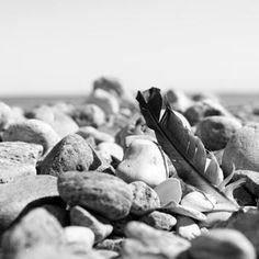 #Beach #Stones #Feather #Hornbaek - my work / www.nordiskrum.dk
