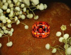 Mandarine Garnet.jpg