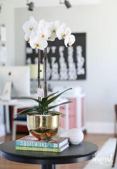 They may be beautiful, but boy can they be diffucult. How to Keep Orchids Alive and Your Home Fresh   POPSUGAR Home