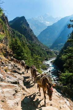 Everest Base Camp Trek-Phakding To Namche Bazaar