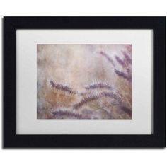 Trademark Fine Art 'Dew Fox Tail Grass' Canvas Art by Cora Niele, White Matte, Black Frame, Size: 11 x 14, Multicolor