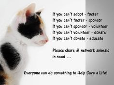 If you can't adopt - foster. If you can't foster - sponsor. If you can't sponsor - volunteer. If you can't volunteer - donate. If you can't donate - educate. Please share and network animals in need ... Everyone can do something to Help Save a Life! 5/11
