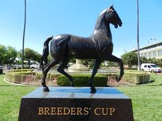 Get excited! It's almost time for @Breeders' Cup!