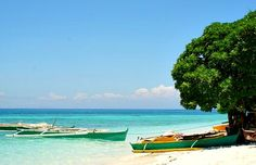 Cebu Camiguin Islands is a page that points you to a popular island is Mindanao famous for its hot springs, cold springs, white sand beaches. Visit Philippines, Mindanao, Forest Park, Corals, White Sand Beach, Cebu, Hot Springs, Quotation, Beaches