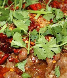 Gu's Bistro - Szechuan Cuisine Atlanta - chengdu noodles and zhong(?) dumplings